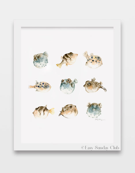 pufferfish, puffer fish, blowfish watercolor art print