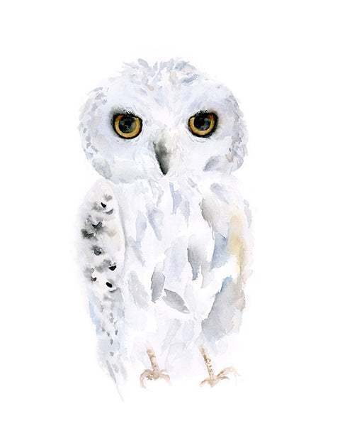 "Snowy Owl Original Watercolor Painting - 11""x14"""