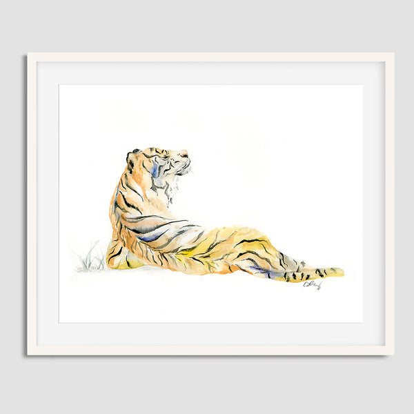 "Sumatran Tiger Original Watercolor Painting - Big Wild Cat 11""x14"""