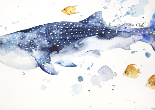 whale shark watercolor painting | whale shark artwork
