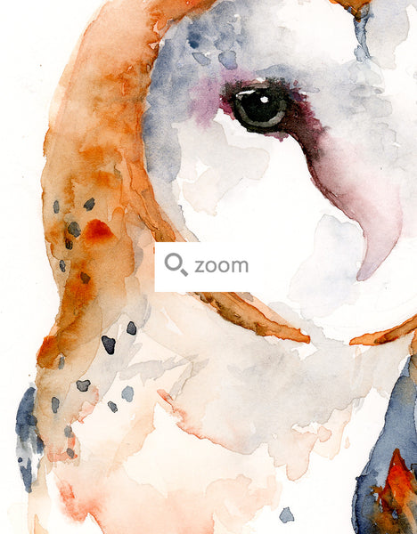 Barn Owl Contemporary Watercolor Art Print
