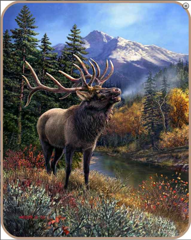 """Bull Elk"" Officially Licensed Heavy Weight Faux Fur Blanket"