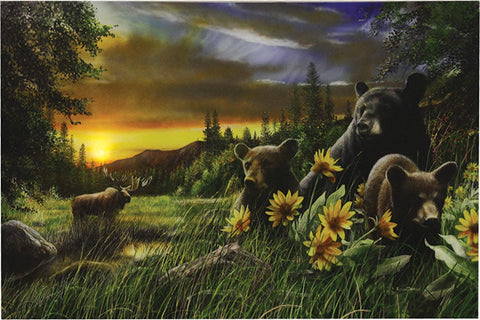 """Basking In The Balsamroot"" LED Art - 24"" x 16"""