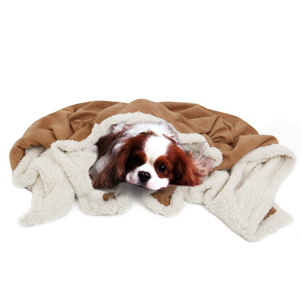 Suede Pet Paw Thermal Winter Blanket
