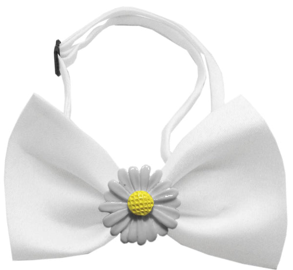 Daisies Chipper  Bow Tie
