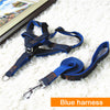 Denim Dog Harness, Collar, Leash