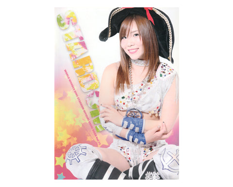 STARDOM GUIDE BOOK #75
