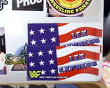 LEX EXPRESS STICKER [SINGLE]
