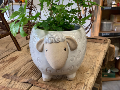 SUGAR the Sheep Planter