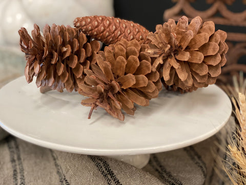 REAL Pine Cone CLUSTER  Table Decor