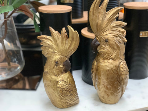 Mr and Mrs GOLDBERG Cockatoo Set