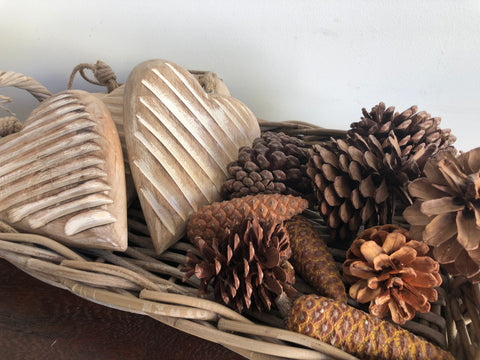 "Mixed ""REAL"" Pine Cones x 10"