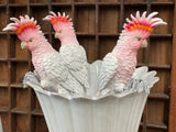 Major Mitchell Cockatoo Pot Sitter Set of 3