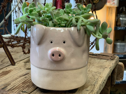 PICKLES the PIG Planter