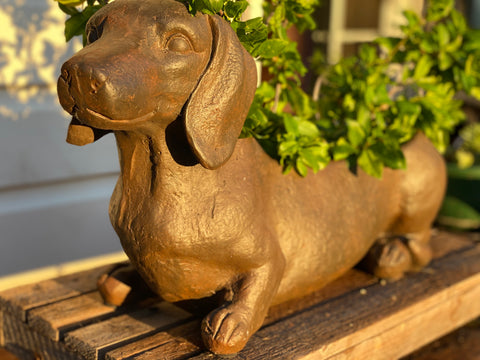 LIFESIZE Sausage Sizzle Planter IN STORE PICK UP ONLY