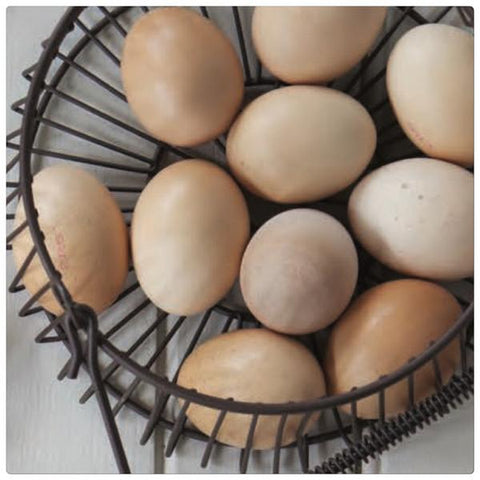Everyday Egg Basket