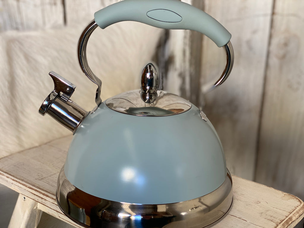 Duck Egg Blue Stove Kettle