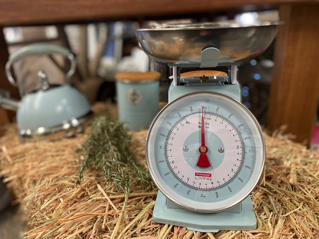 Duck Egg Blue Kitchen Scales