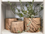 WOOD Look Concrete Pot