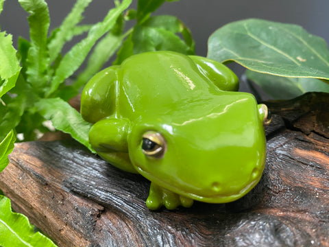 Terry Tree Frog