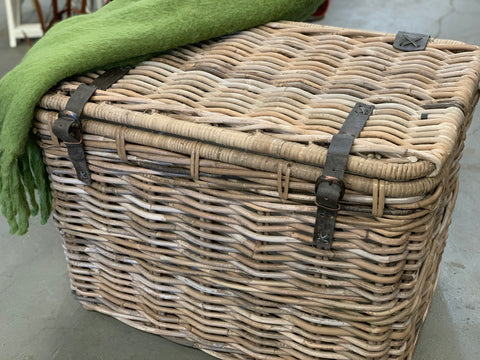 Rattan Lined Trunk