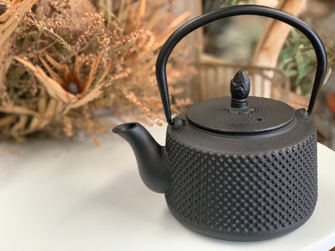 NEW Cast Iron Tea Pot with Strainer