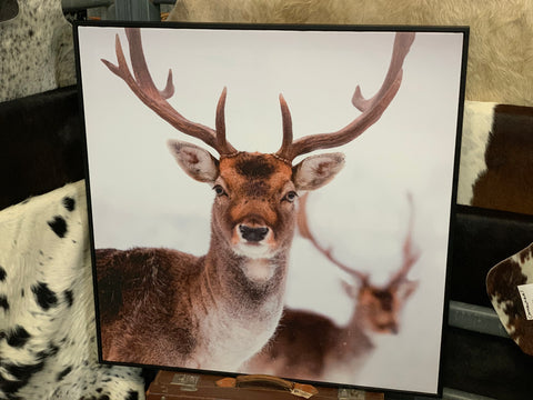 RAINDROP the DEER Canvas