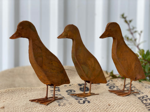 RUSTY Ducklings Set of 3