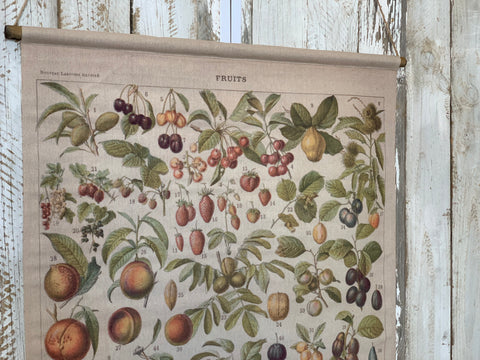 Vintage FRUIT Rolled Canvas