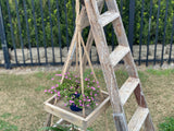Recycled Timber - Hanging 2 Tier Shelf