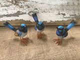 Blue Wren Set of 3