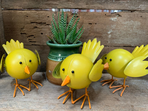Set of 3 Small SUNNY Tweeties