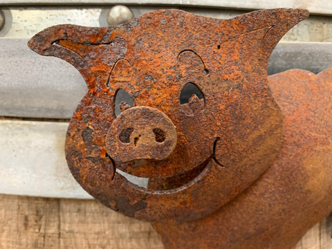 Rusty Magnetic PIG