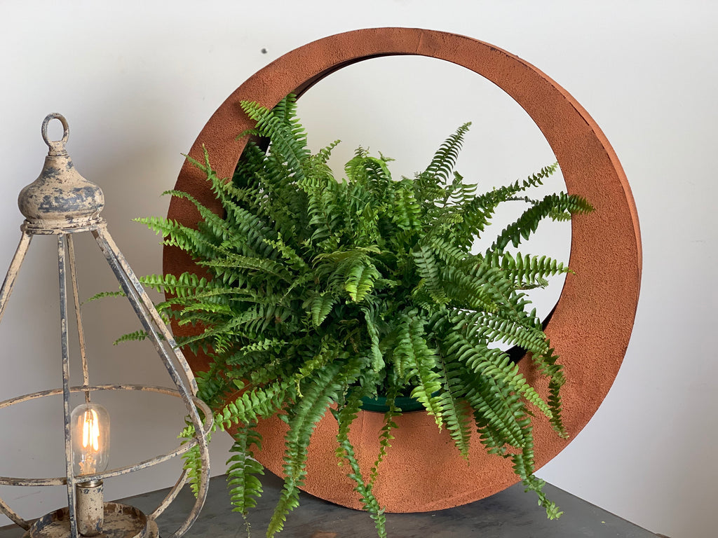 Large Rustic RING Planter