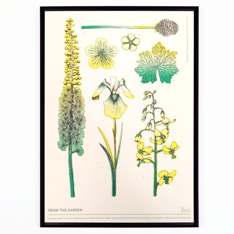 From the Garden Riso Print by The Hepworth Wakefield X Studio Wald