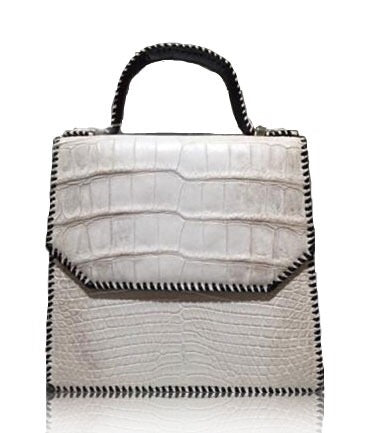 Platinum Crocodile Bag - UniqueFindz.com