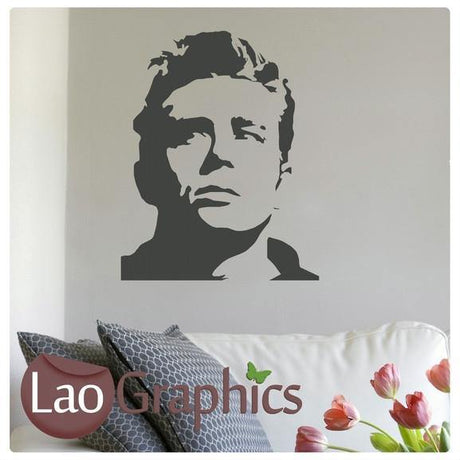 James Dean Celebrity Legend Wall Stickers Home Decor Art Decals-LaoGraphics
