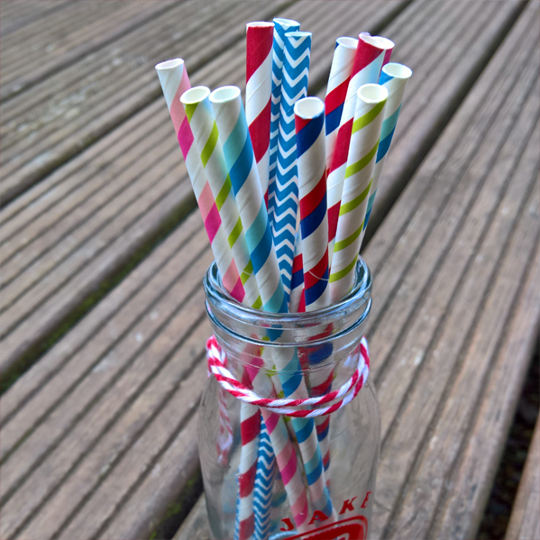 25 Biodegradable Paper Straws