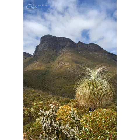 Bluff Knoll, Stirling Ranges - GS2026