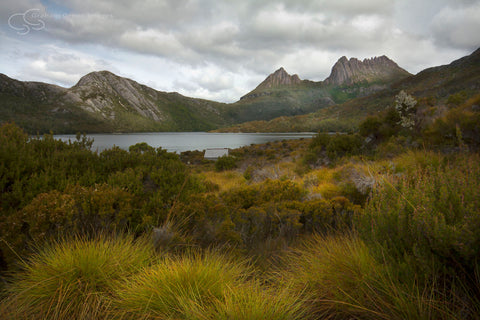 Cradle Mountain, Tasmania - TA3002