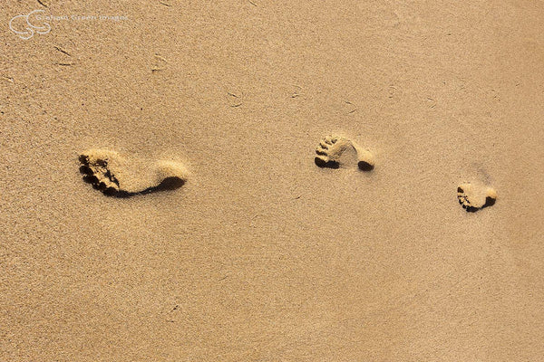 Footsteps, Ningaloo - NG8016