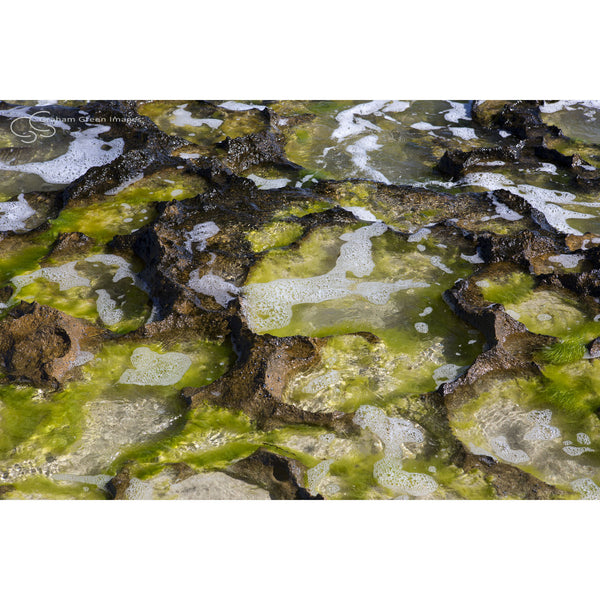 Rock Pools - NB2020