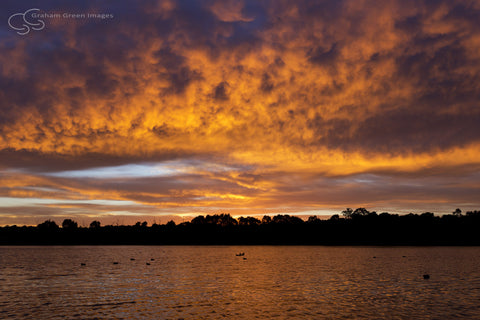 Sunrise, Lake Joondalup - JN4104