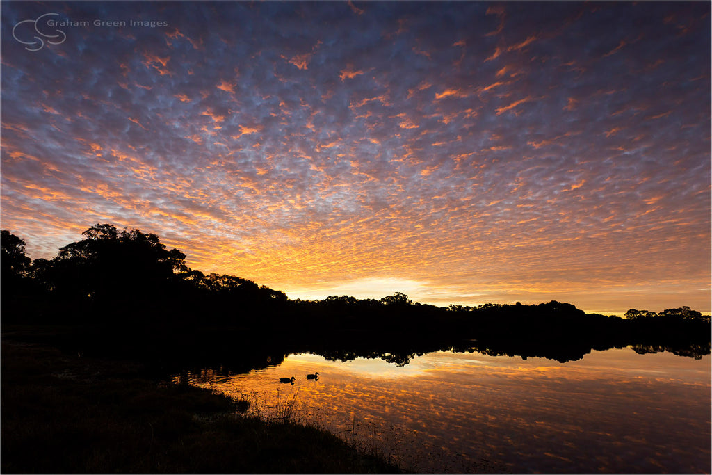 Sunset, Lake Joondalup - JN4110