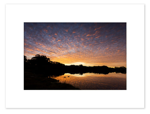 Lake Joondalup Sunset Mounted Print - JNM4110