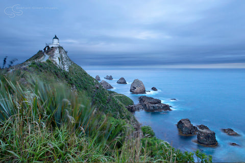 Nugget Point, NZ - NZ4008