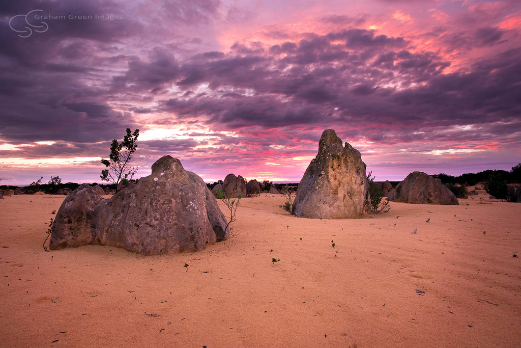 Sunset, The Pinnacles - CV7003
