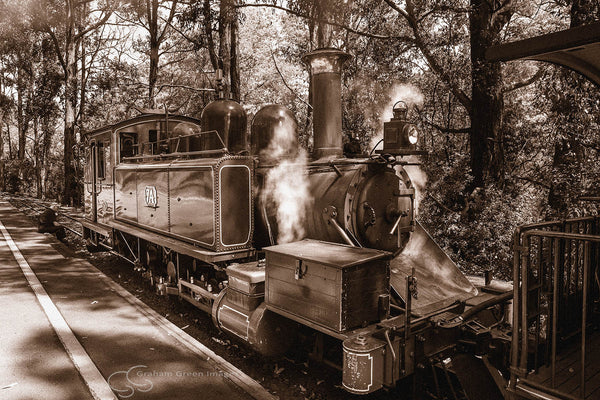 Puffing Billy, Dandenongs - VC5052