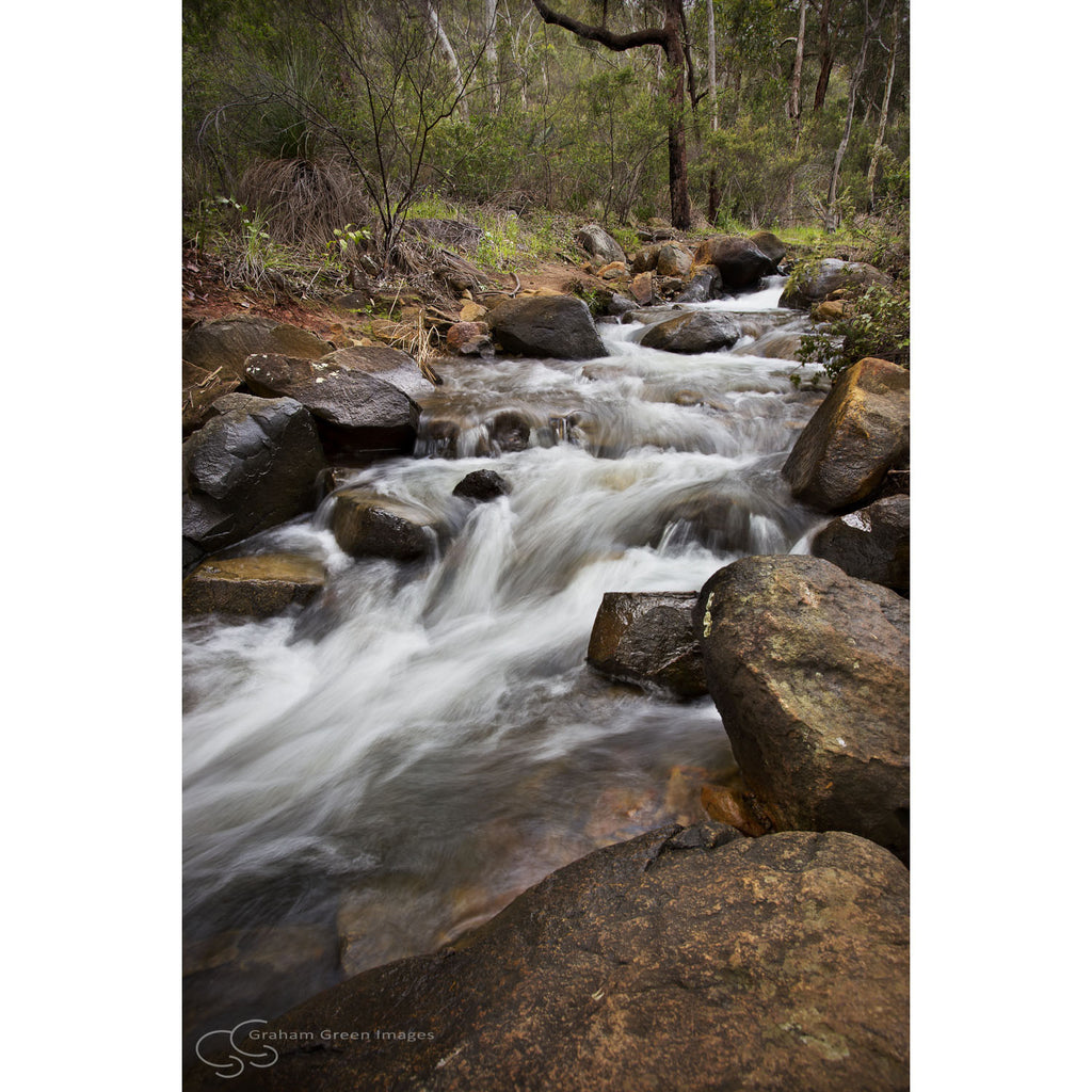 Stream, Lesmurdie - PH7104