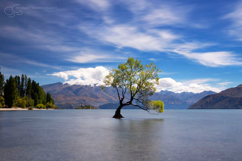 Lake Wanaka, NZ - NZ4007
